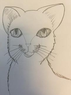04.19.2020 Kitten.JPG