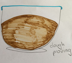 04.01.2020 Bread Dough Proving.JPG
