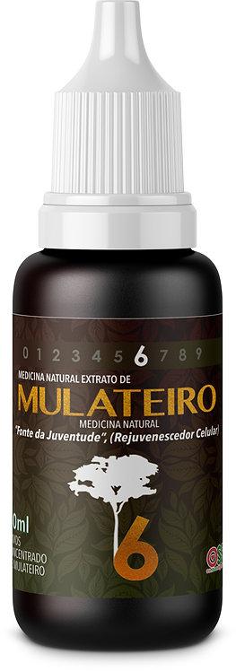 Mulateiro 30ml