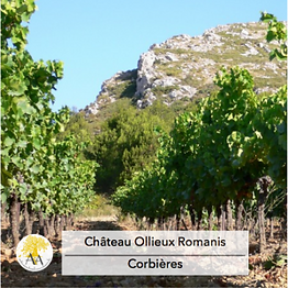 chateau ollieux romanis.png
