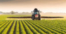 agriculture-facebook.jpg