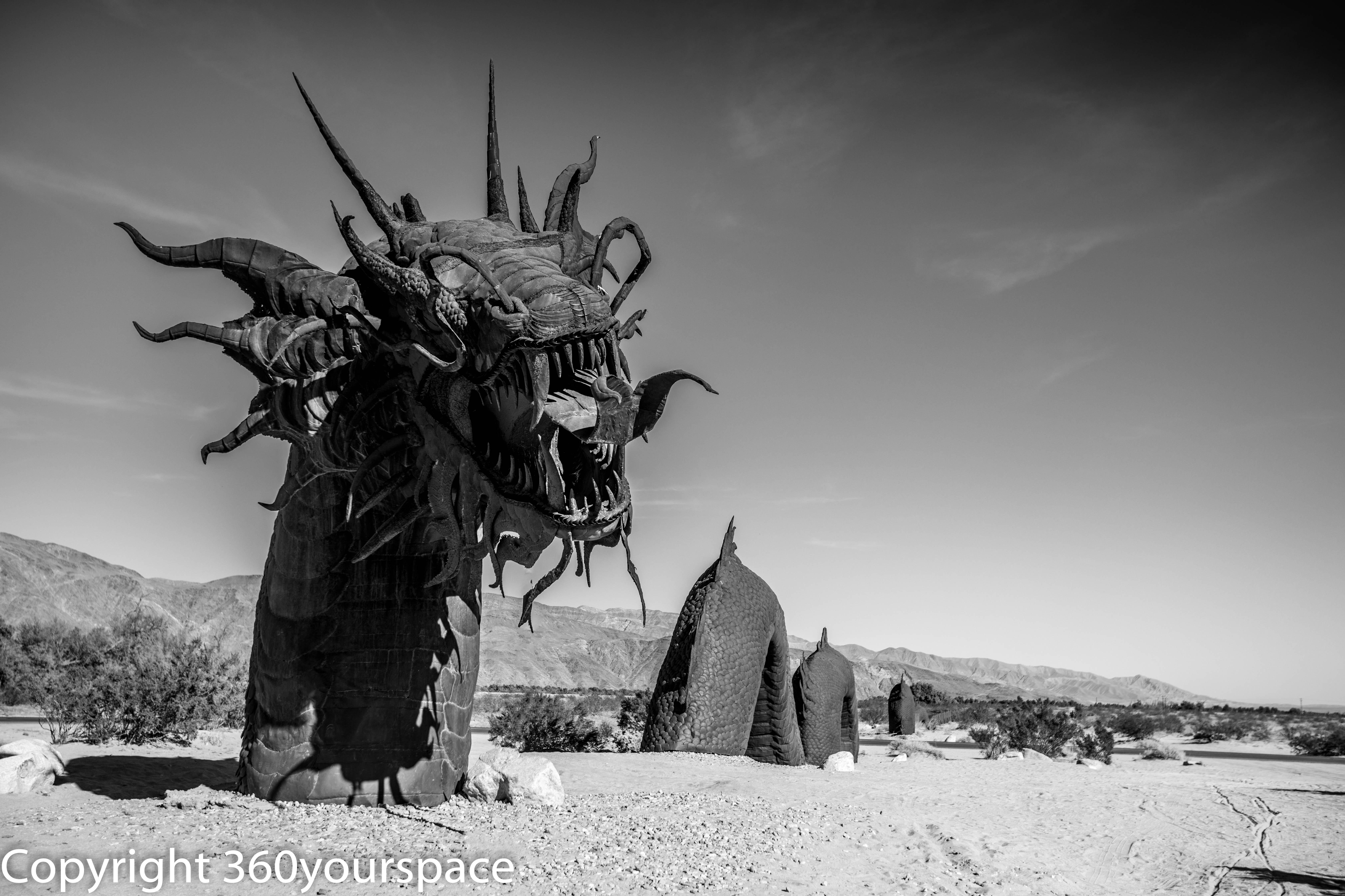 Borrega Desert California