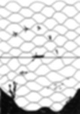 Line 中ページ(4)
