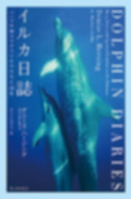 青い鳥の尻尾 表紙