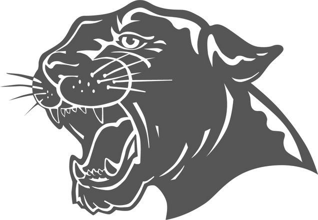 Darby Panther