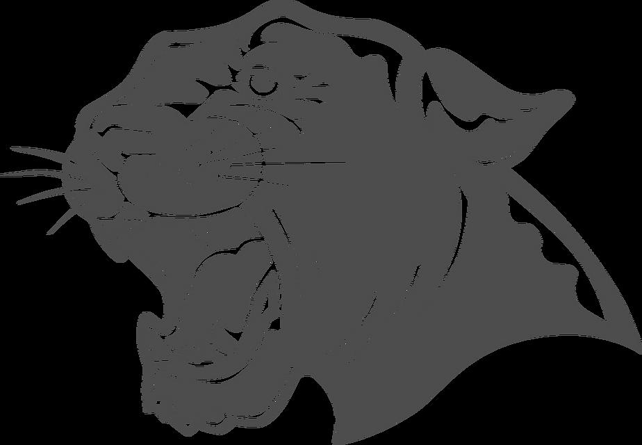 HDB_Athletics_Panther_Logo.png