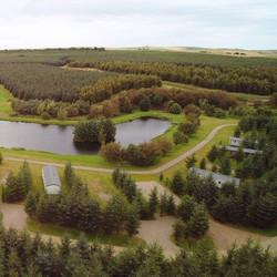 Pond View Birds Eye