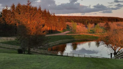 Greenwood Loch - Autumn View