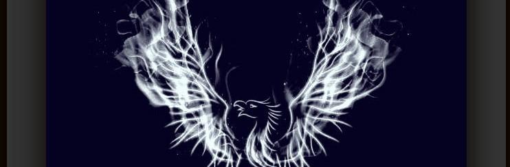 ADV ALR dark slate phoenix 19 copyrights.jpg