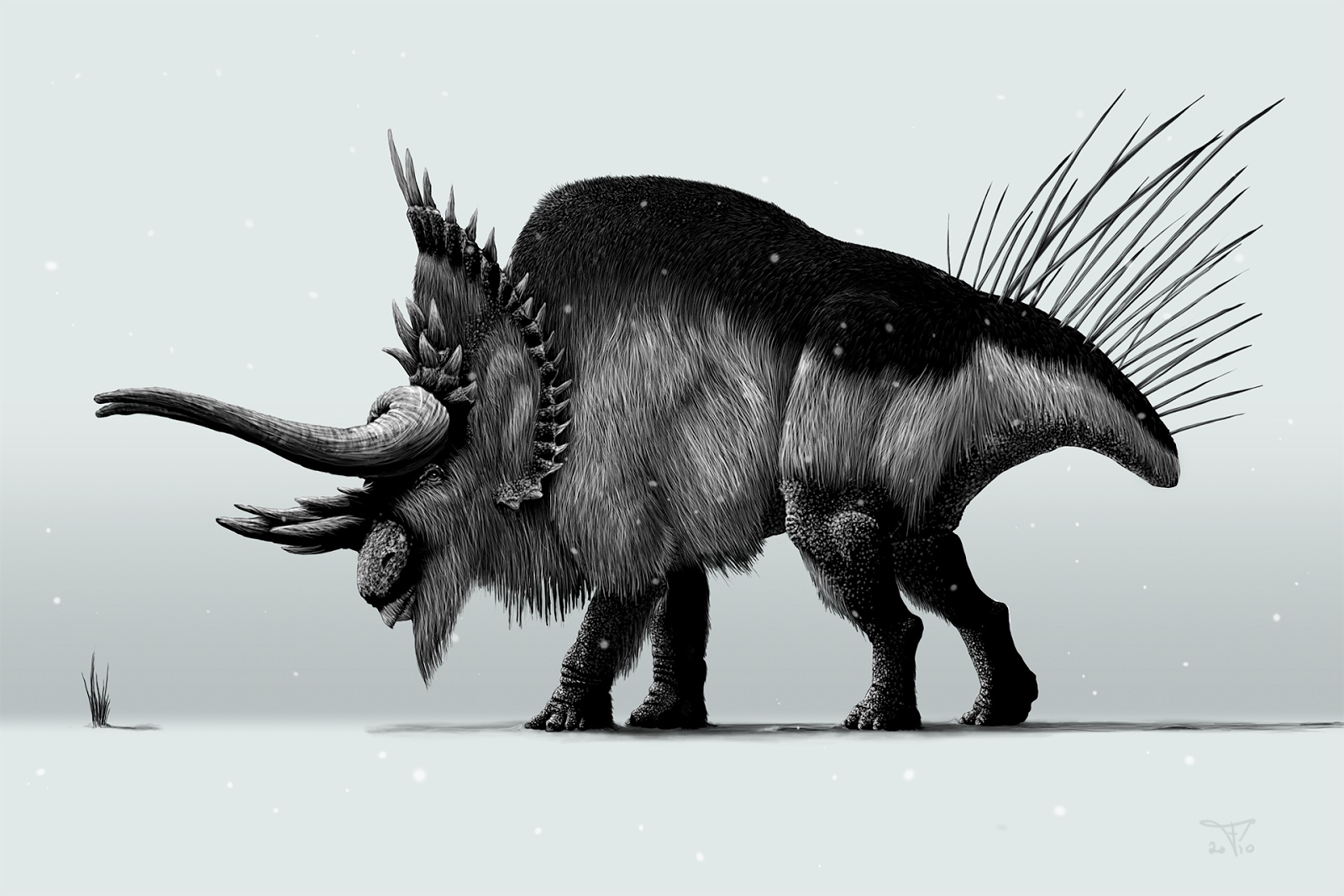 Nivaceratops