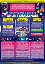 A-Parents-Guide-to-Online-Challenges-030