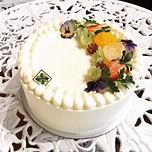 chiffon cake.jpg