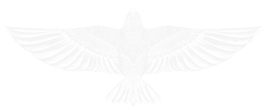 LOGO-NO SUN-WHITE BIRD ONLY.png
