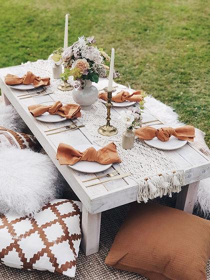 ochre picnic.jpeg