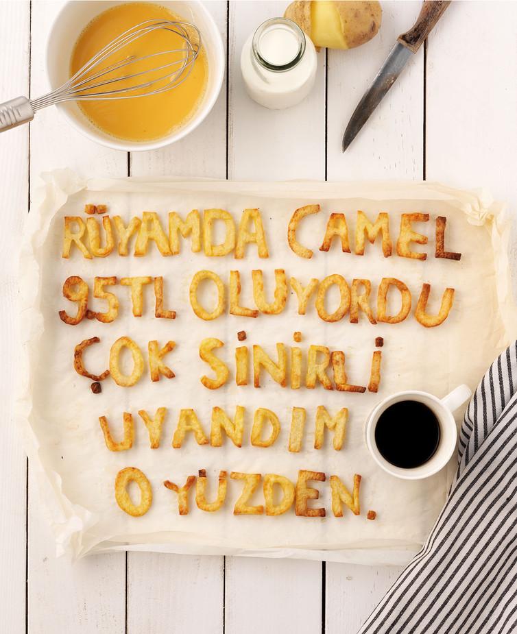 camel_Artboard 55.jpg