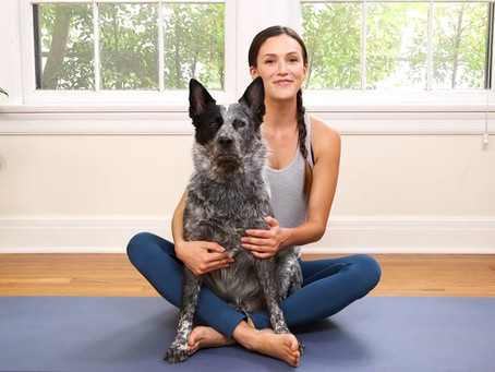 Yoga with Adriene, 30 day challenge