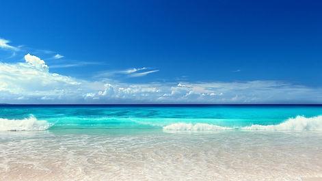 beachfl.jpeg