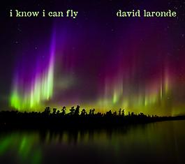 DavidLaronde-AlbumCover-Mockups-02 (1).p