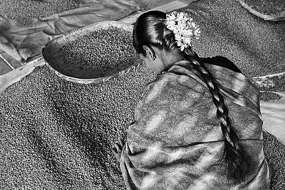 Аромат Мечты: Путешествие в Мир Кофе