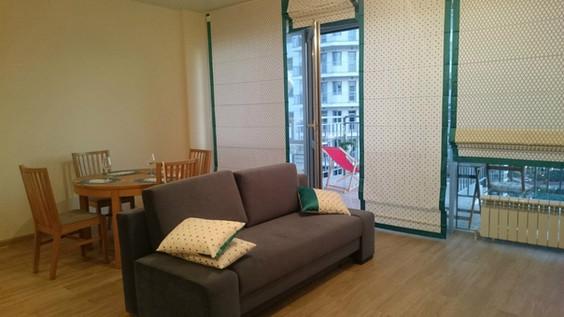 Римские шторы в гостиную и подушки, г.Сочи