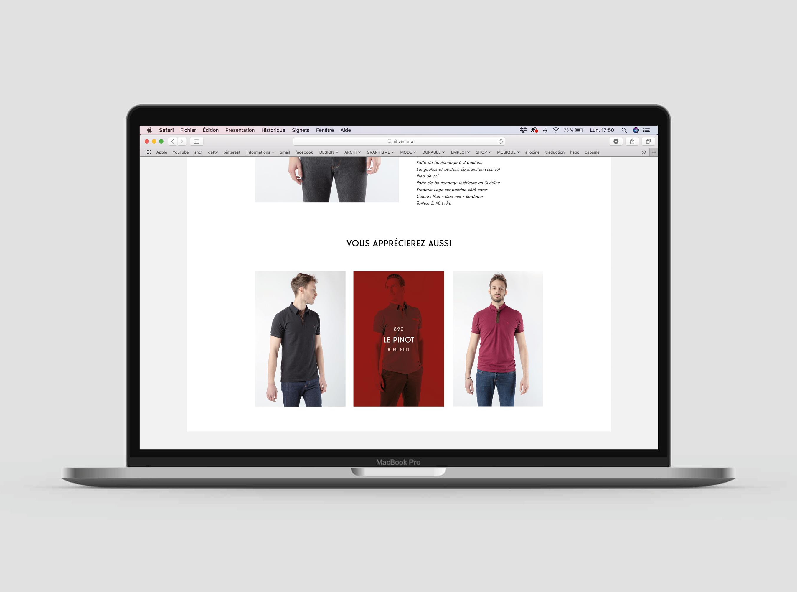 site web vinifera4