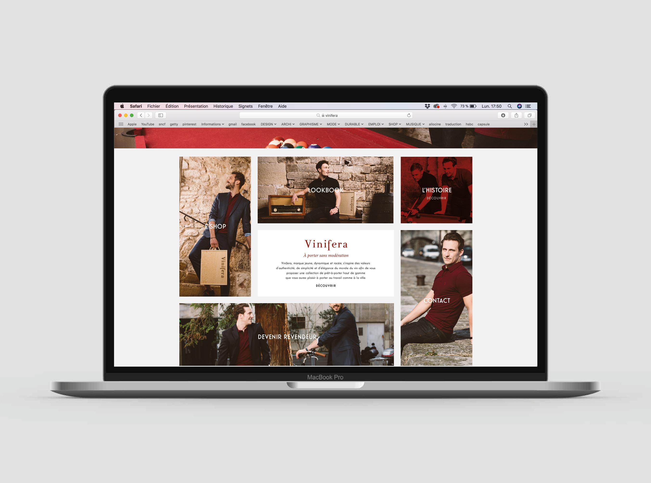 site web vinifera2