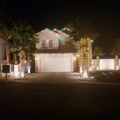 Christmas Colored Roof Lining and Soft White LED Palm Tree Wrap