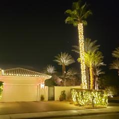 Soft White LED Christmas