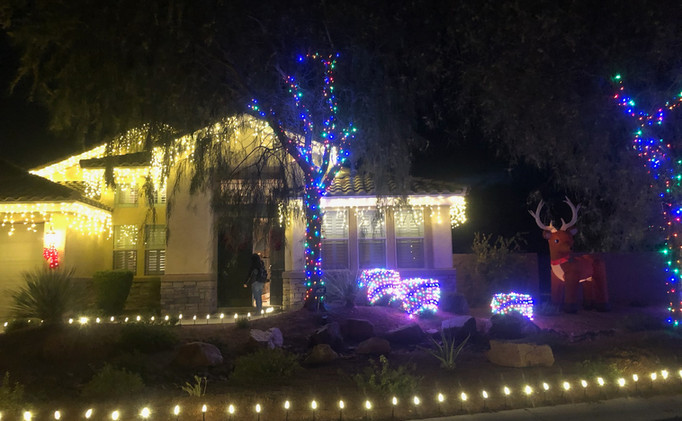 Soft White Icicle Roof-linging with Multi-color LED Tree Wrap