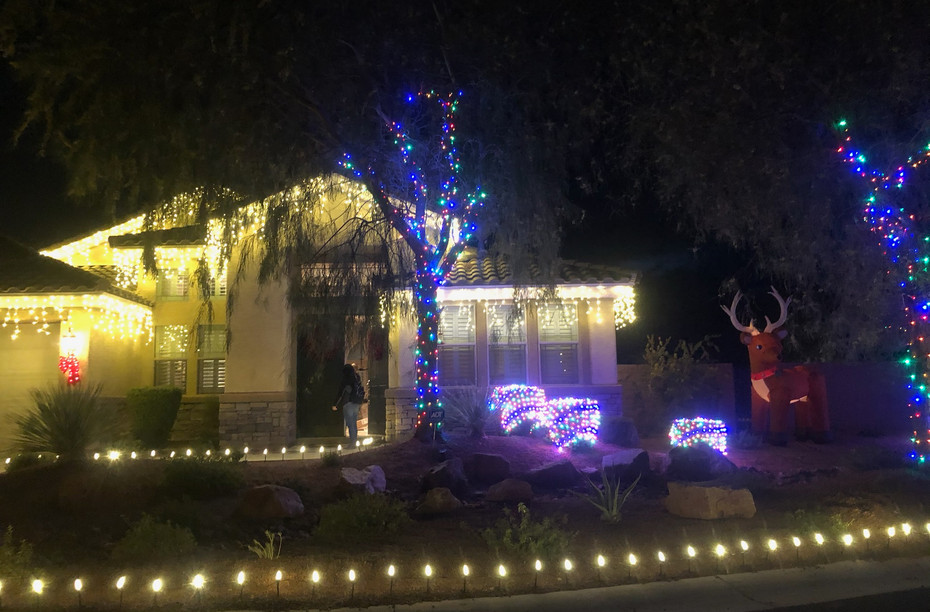 Soft White Roof Lining and Muli-colored LED Tree and Bush wrapping.