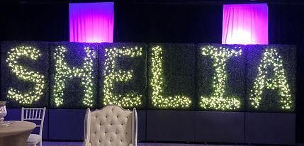 Custom LED Lettering Display