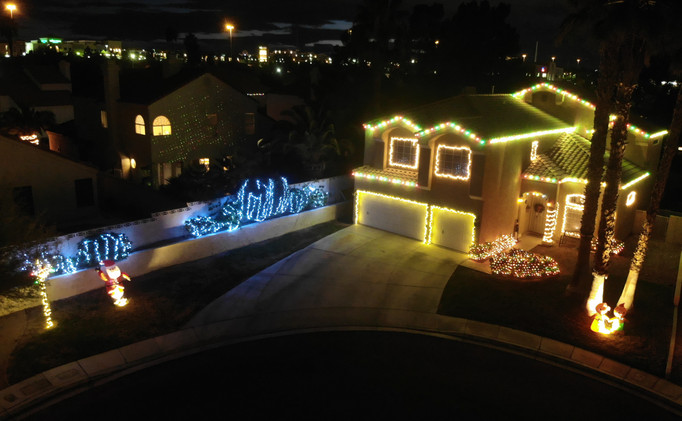 Christmas Colored Roof-lining with LED Wrapped Bushes