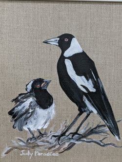 Magpie & Chick