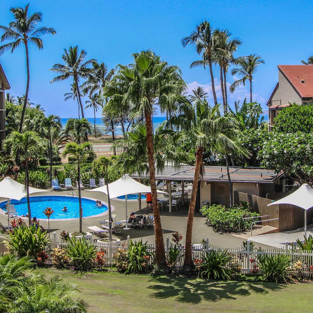 Maui Schooner