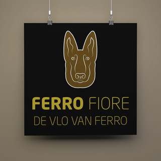 De vlo van Ferro