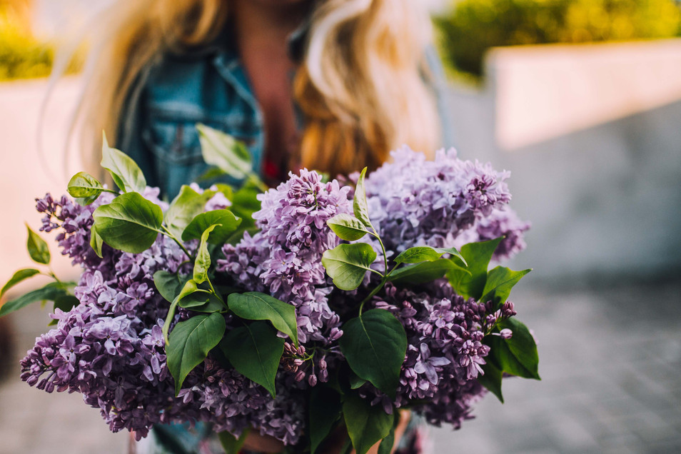 Lifestyle photo of a woman with lilacs