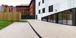 Salford Garden 3
