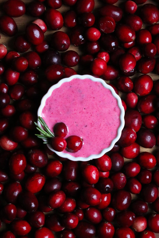 Vegan Cranberry Rosemary and Orange Aioli for Gobbler Bomb