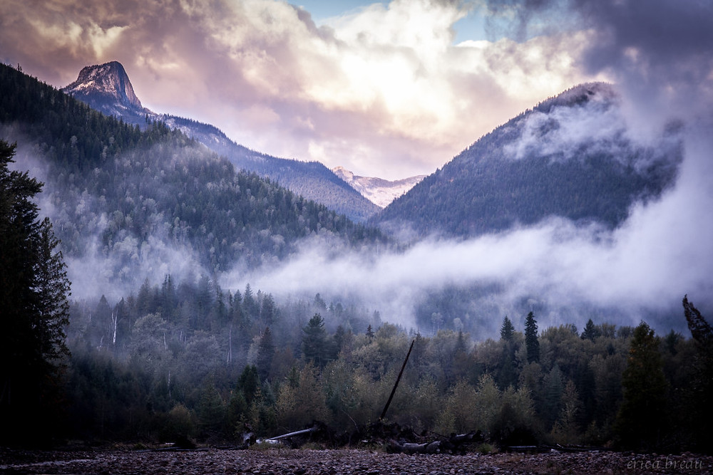 misty-morning-2-of-7