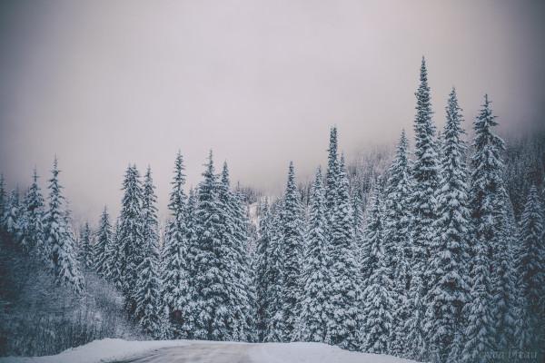 snow-4-of-9