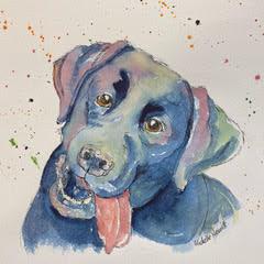 """""""Labrador Sketch"""" Watercolour 12""""x12"""" £49"""