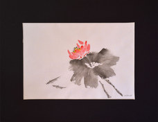 """""""Lotus"""" Ink 34x43cm £60"""