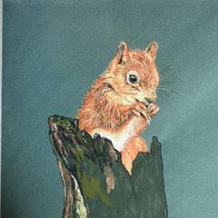 """Baby Squirrel Study"" Pastel 12""x12"" £95"