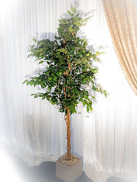 Wedding Venue Styling and Decorations