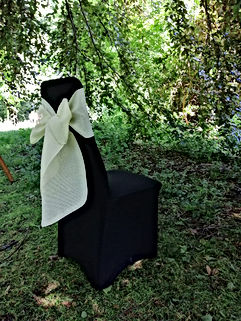 "<img src=""055-chair-covers-dream-hire-deco.jpg"" alt=""wedding hire"">"