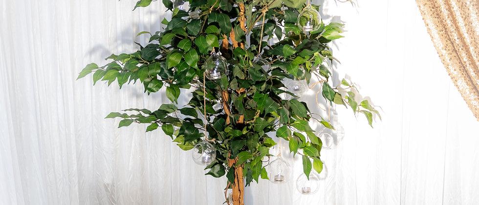 Artificial Ficus Aisle Tree