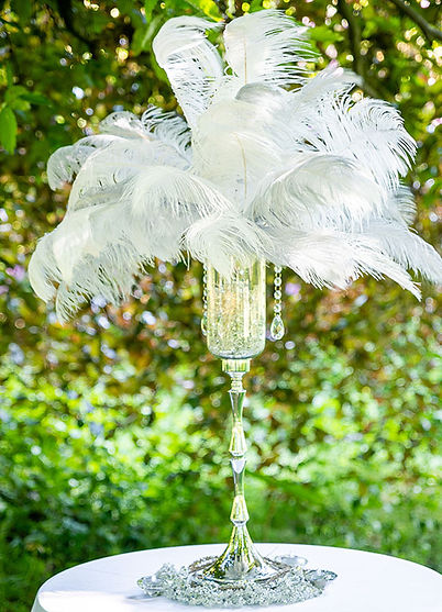 "<img src=""220-ostrich-feathers-centrepiece-hire.jpg"" alt=""ostrich feathers"">"