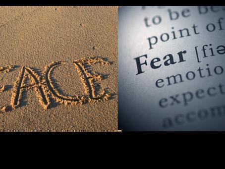 Minimalist Survival: Fear vs. Peace