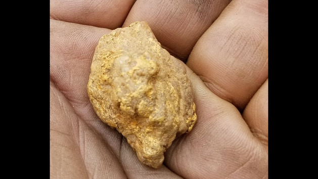 The Tracey Nugget