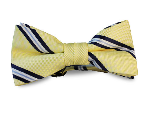 Yellow withNavy and Light Blue Stripes